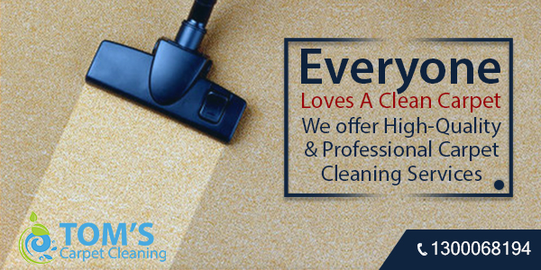 Carpet Cleaning Services Ringwood